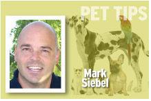 Pet Tips Mark Siebel