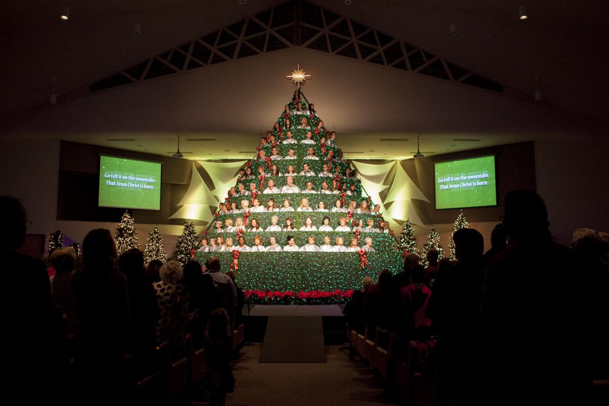 Foothills Baptist choir adorns Living Christmas Tree with ...