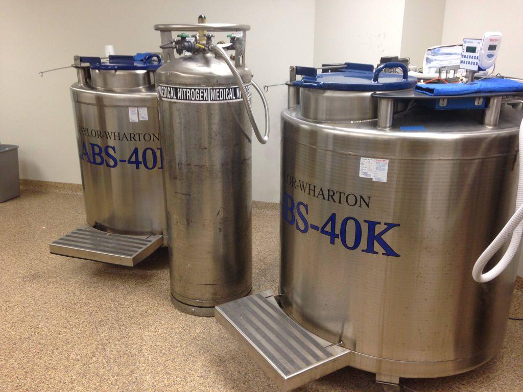 A liquid nitrogen freezer