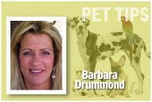 Pet Tips Barbara Drummond