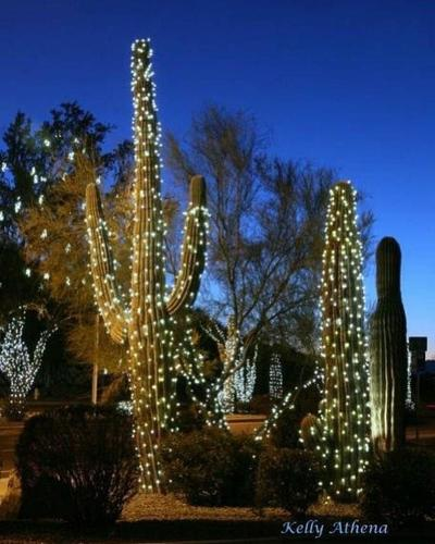 Festival of Lights Kick-Off Party