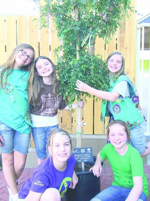 Local girl scouts donate a tree AAWL new adoption center