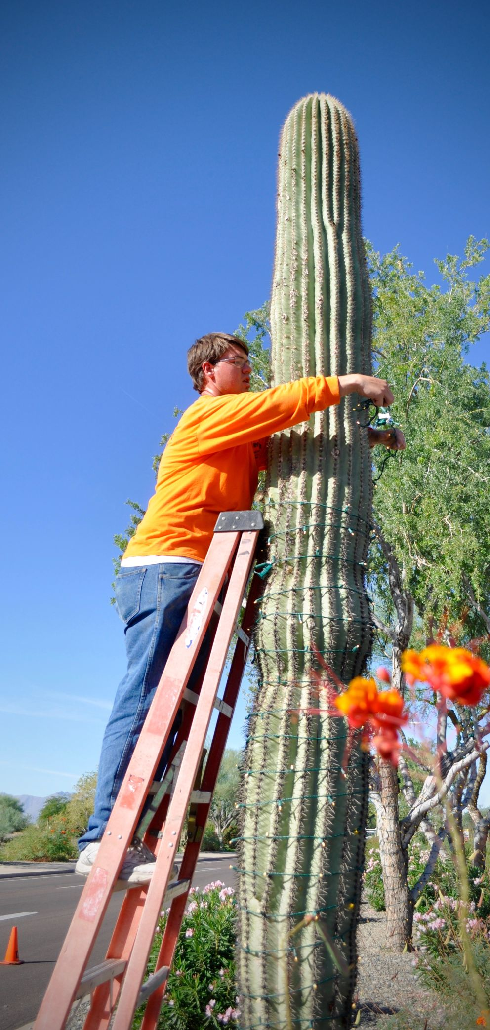 christmas lights  pany prepares east valley county for