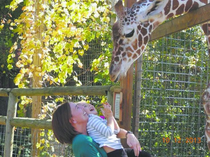 Living Treasures giraffe