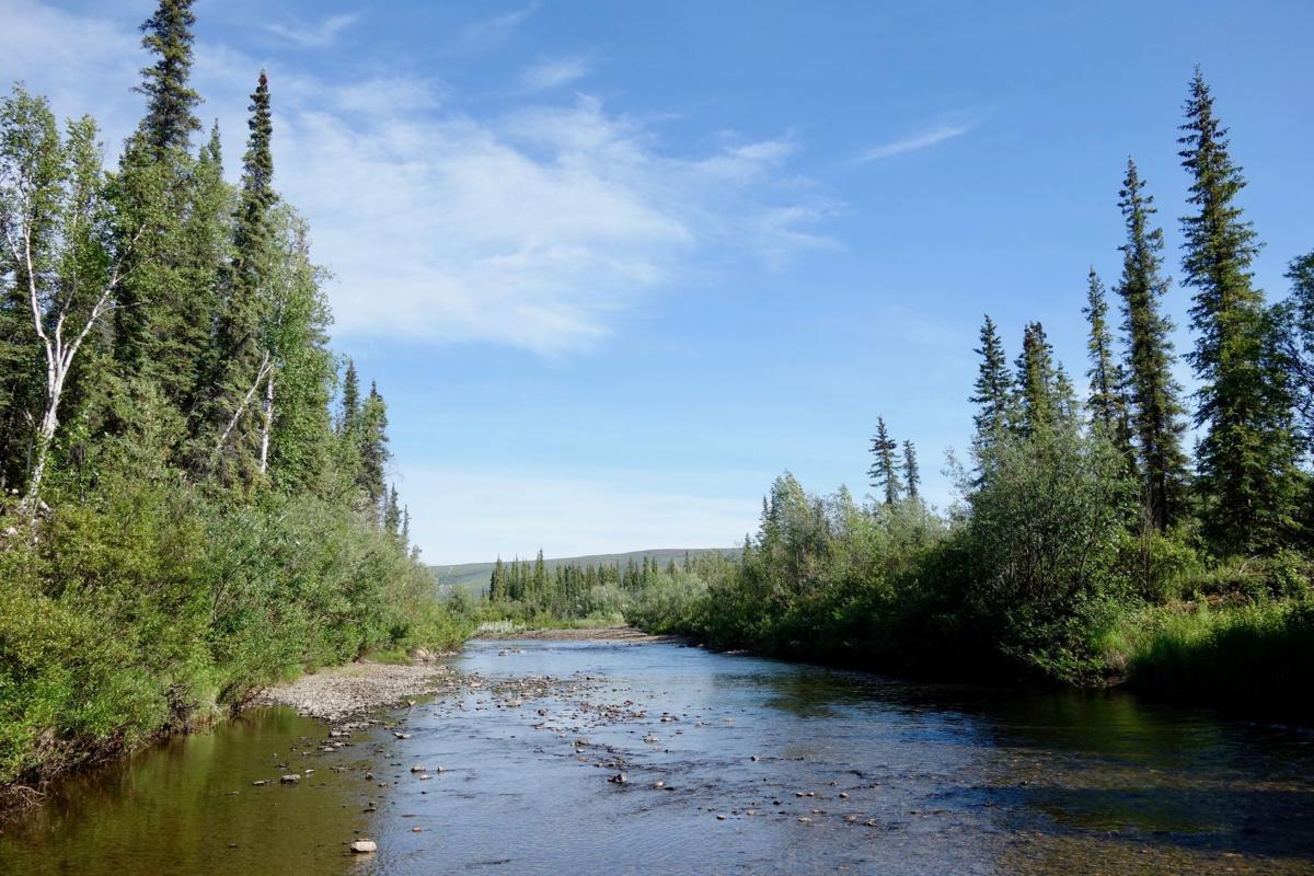Alaska's cold spot, Prospect Creek.jpg