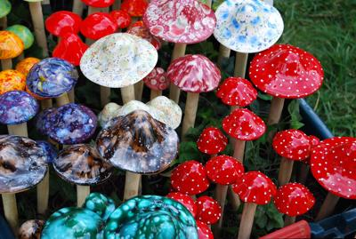 Give 'shrooms a chance | News | anchoragepress com