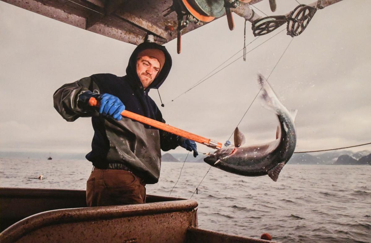Salmon Picture 1.jpg