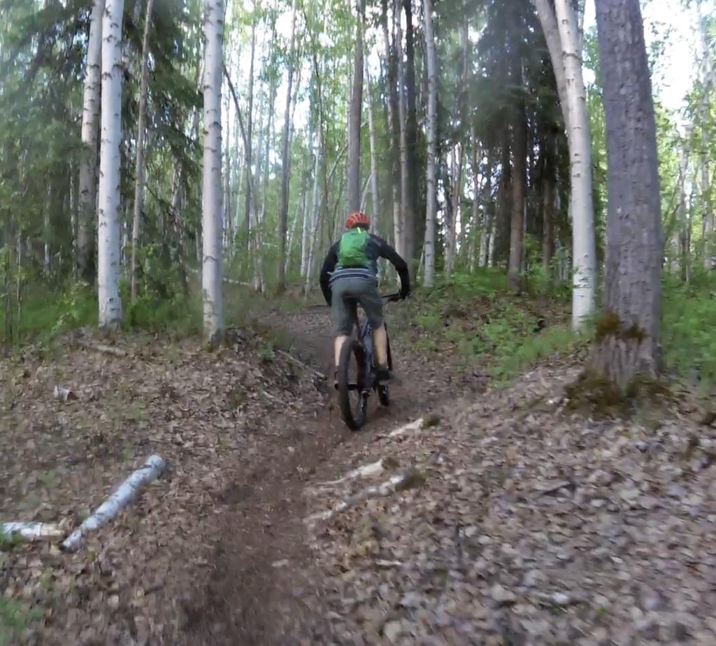 Socially distanced mountain biking on the University of Alaska Fairbanks trails.png