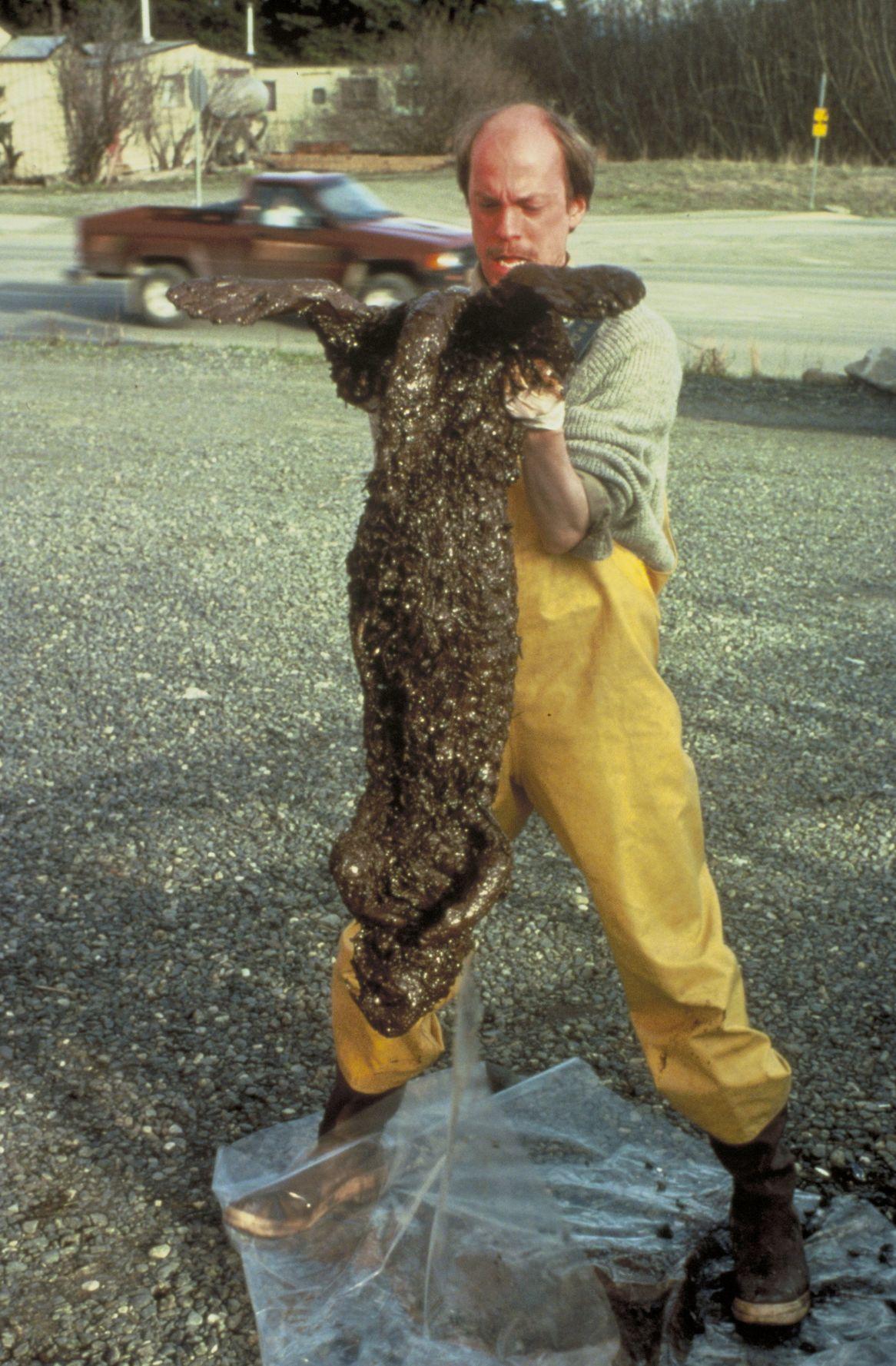 Valdez oil spill