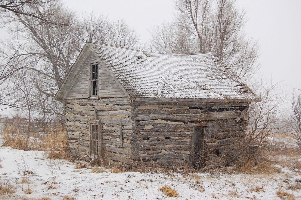 1. cabin  (reduced).jpg