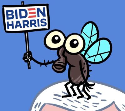 Pence fly cartoon