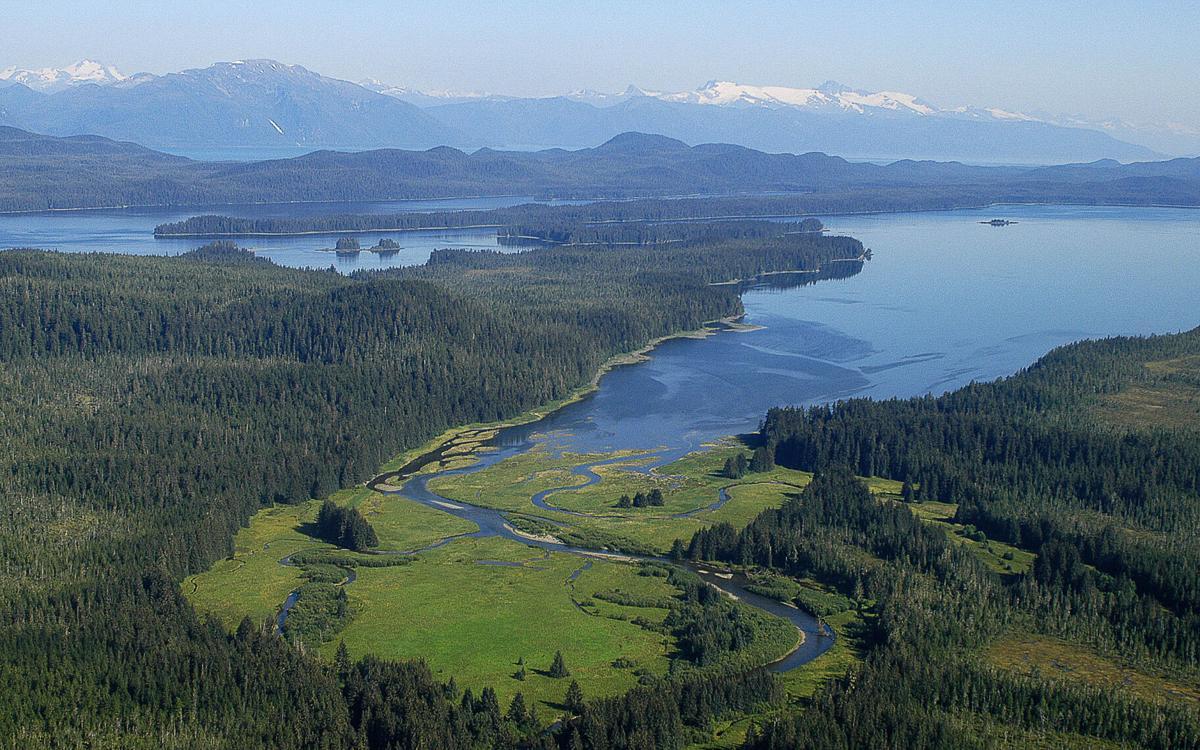 King Salmon River delta.JPG