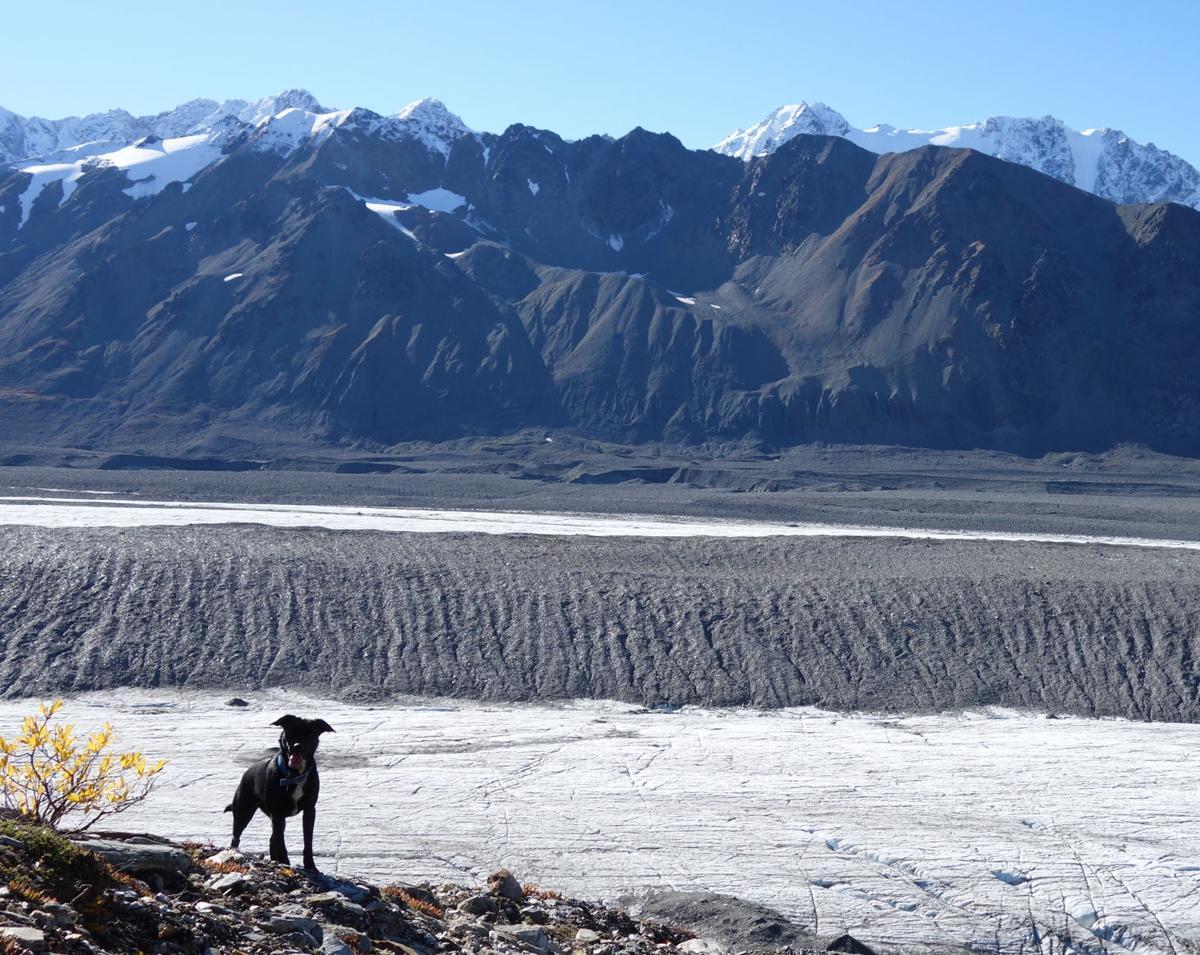 2. Canwell Glacier.JPG