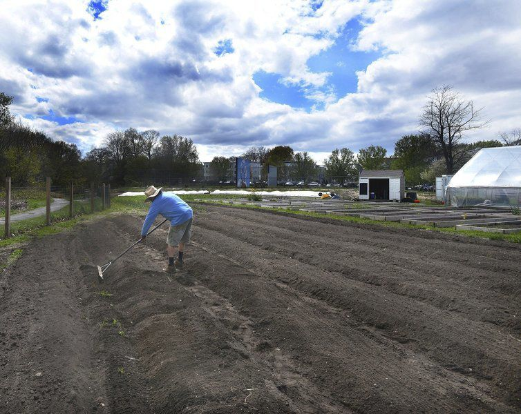 Andover farmer works to feed many at urban garden