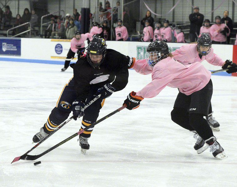 Pink in the Rink for the Annual Colleen E. Ritzer Memorial Game - January 9, 2019