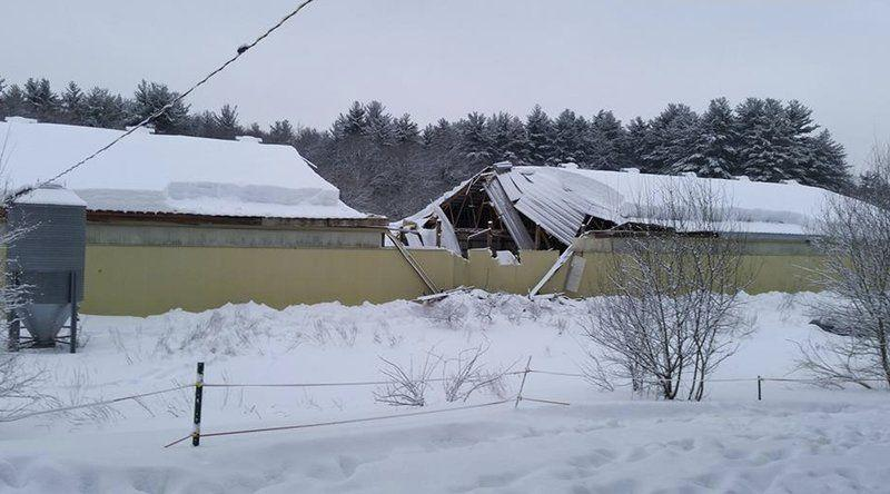 Roof Collapse One Of 3 Problems At Flying High Stables