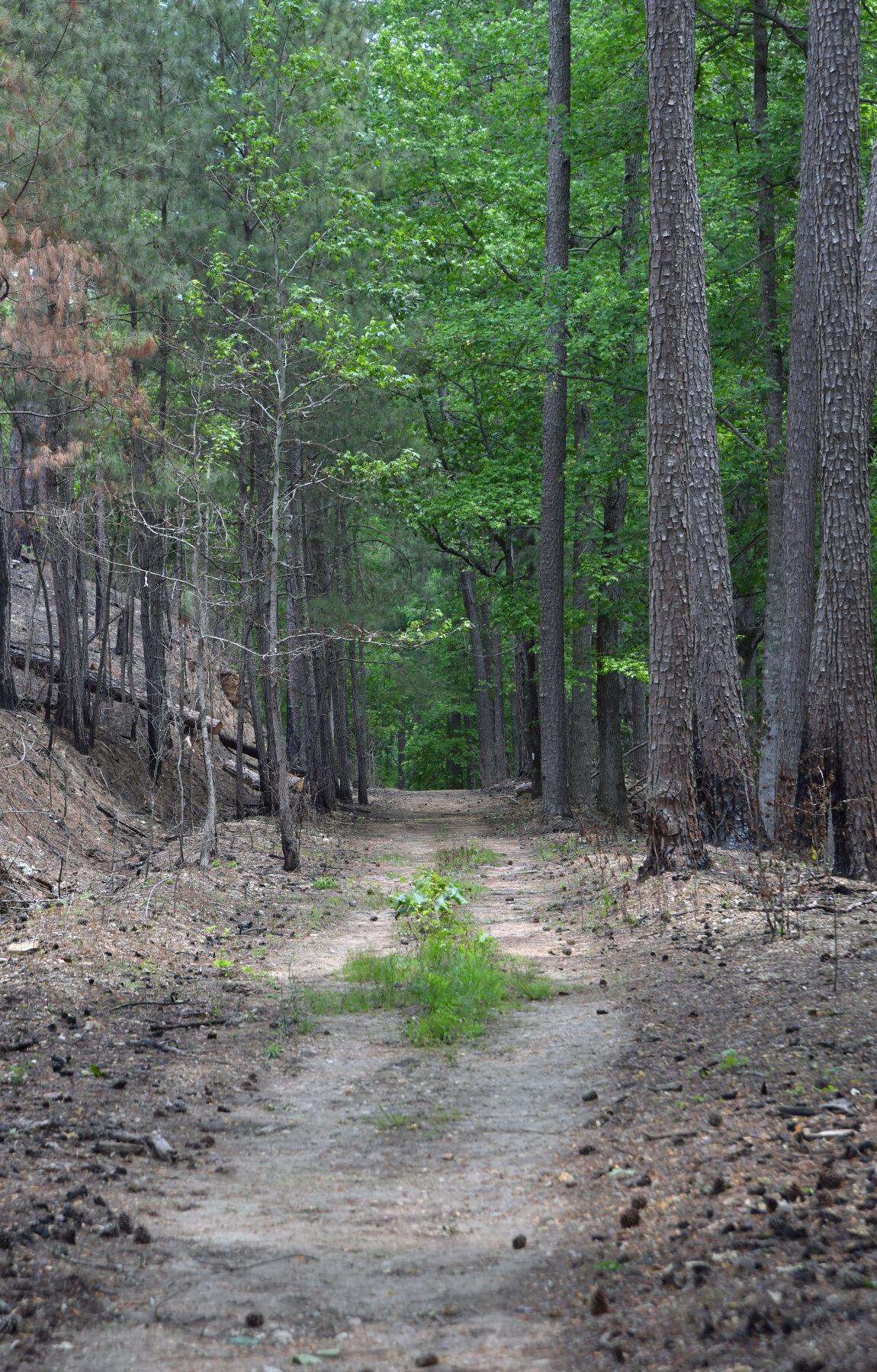 Heflin Spur Trail Sights BW 2.JPG