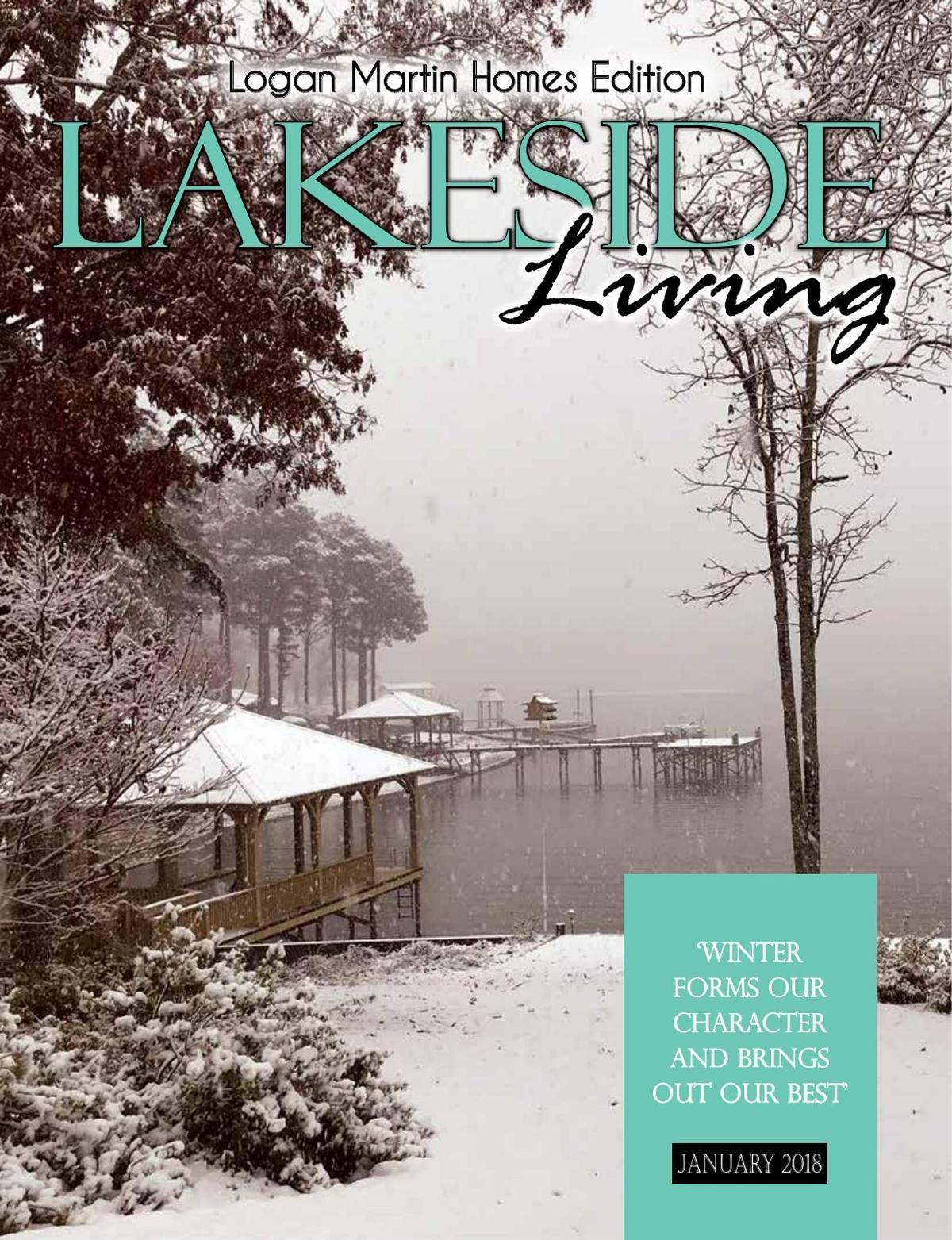January Lakeside