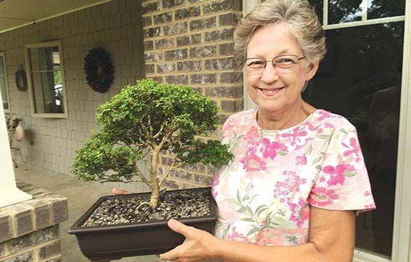 SHERRY KUGHN: Ann Jones finds caring for bonsai trees relaxing