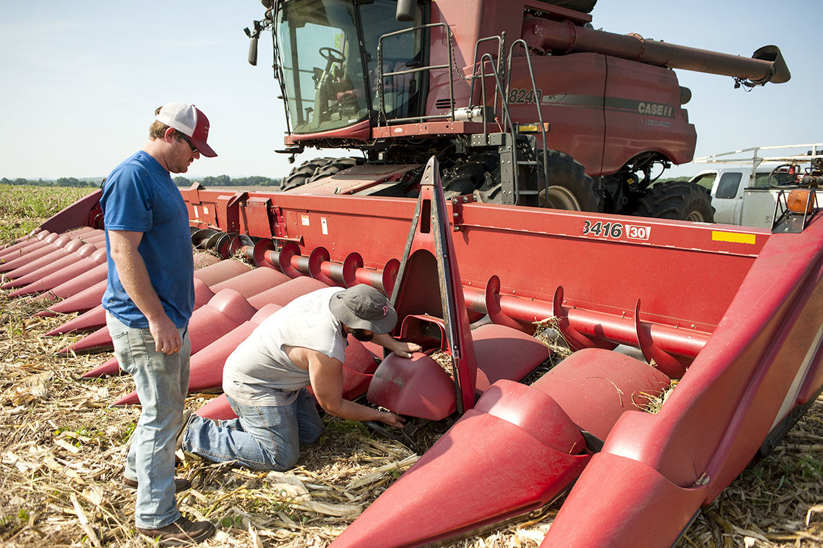 CORN HARVEST: Stockdale Farms employees prepare for process that takes a few weeks to complete
