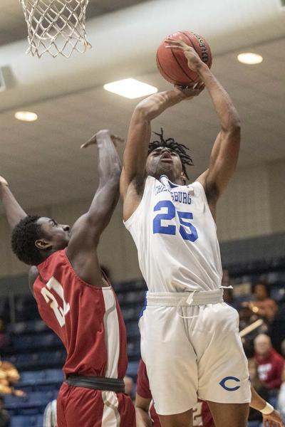 Tigers fall to Handley