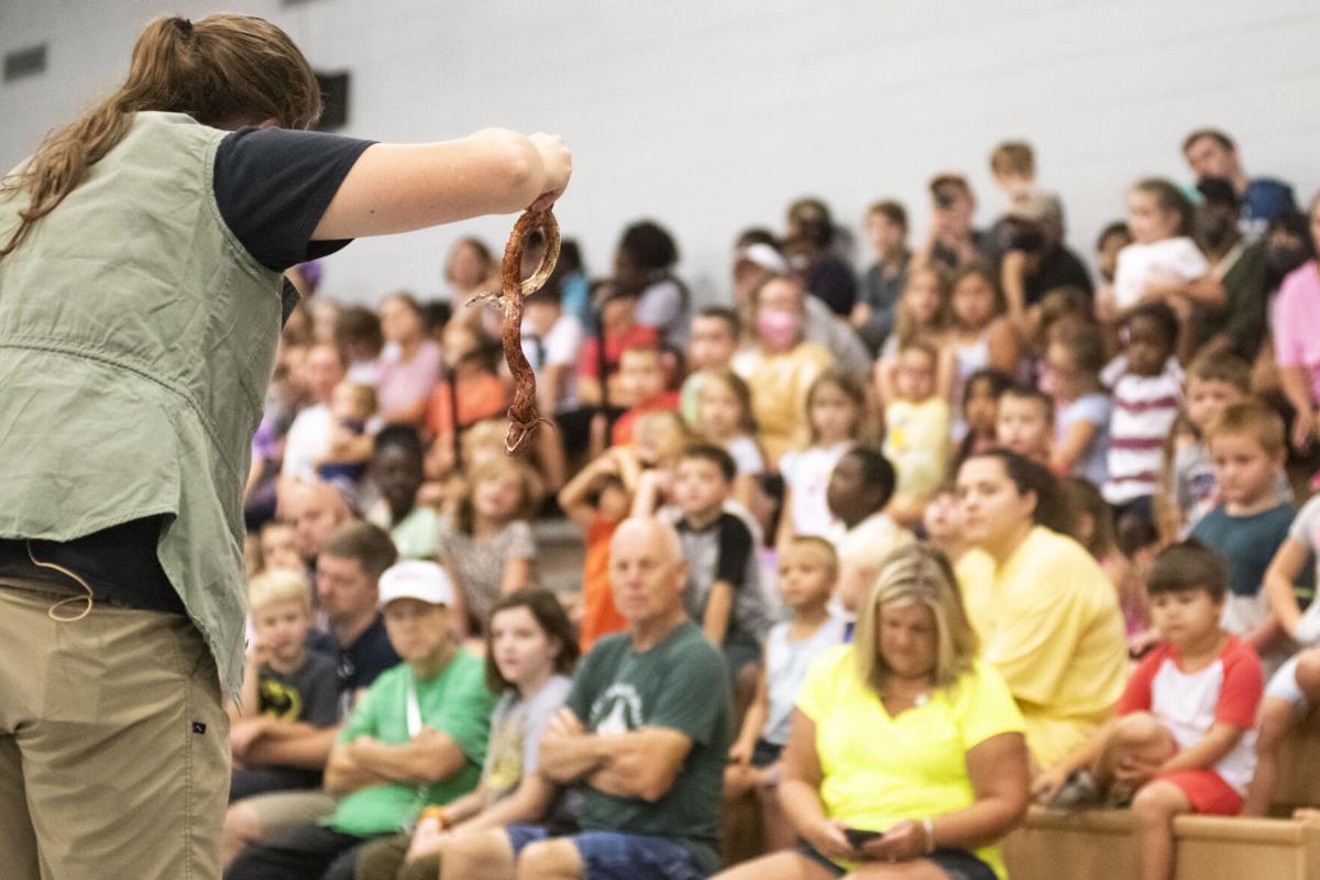 yarboroughs reptile show 001 tw.jpg
