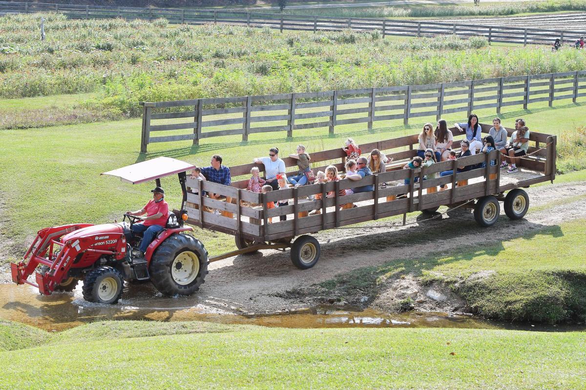 Bennett hay wagon