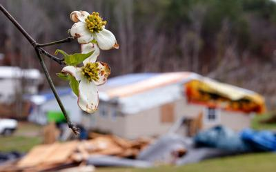 Jacksonville and Calhoun County are waiting to see whether they'll hit a dollar limit for the federal government to kick in for tornado cleanup. Here's why.