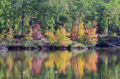 Fall at Cheaha Lake