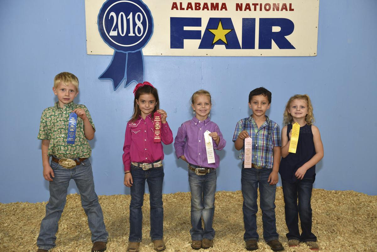 Alabama National Fair-sheep 2018 (2).jpg