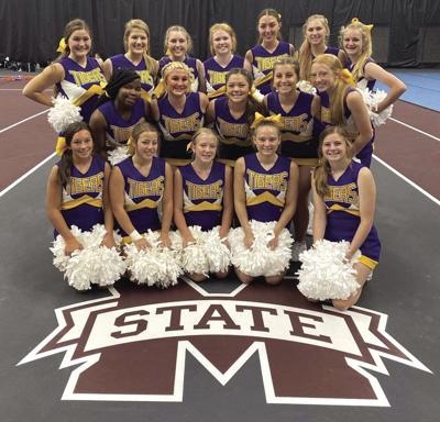 Springville Cheer Team.jpg