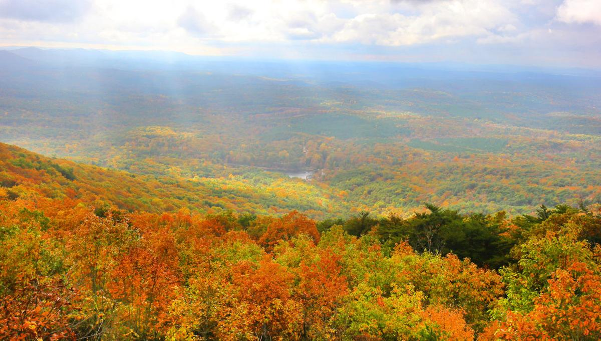 Park officials ask public to help light up Cheaha | News ...