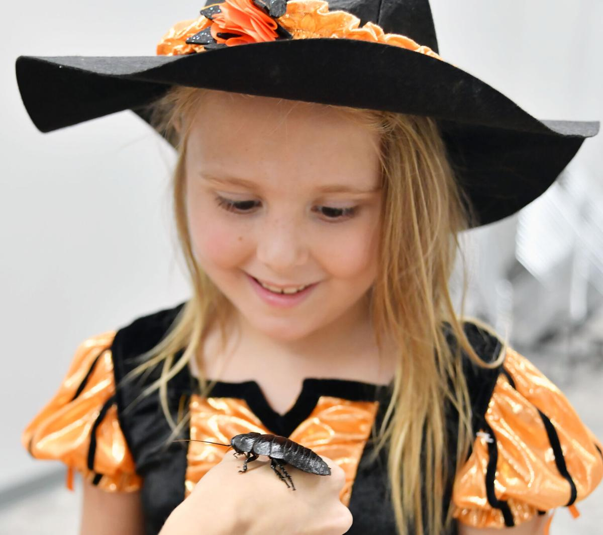 Anniston Museum and Gardens Fall Fest  26.JPG