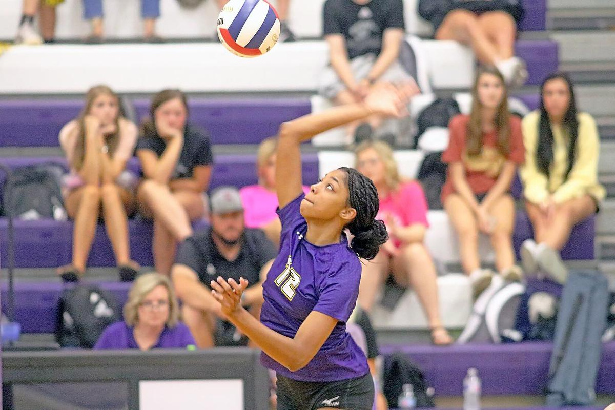 Springville volleyball1.jpg