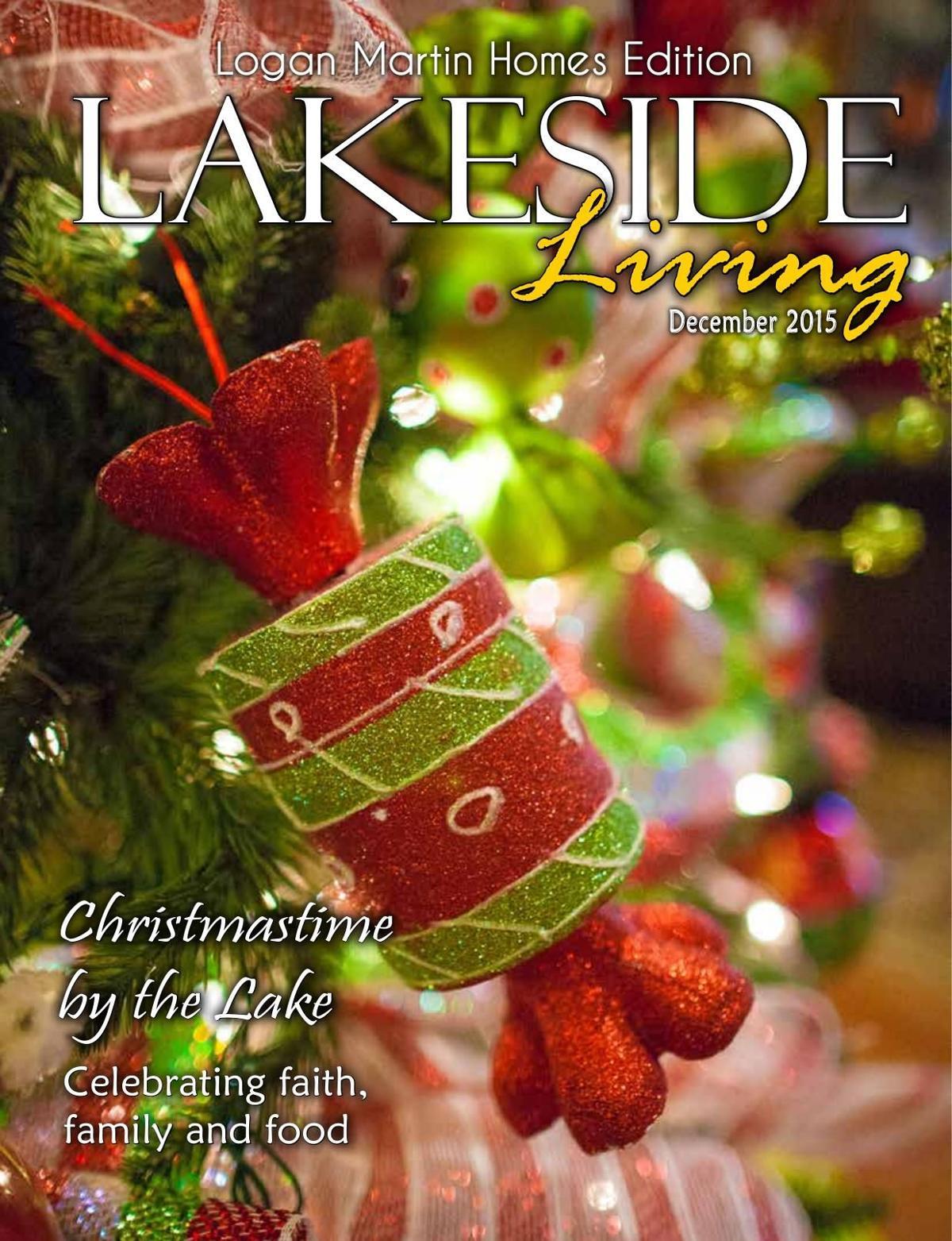 Lakeside: December 2015