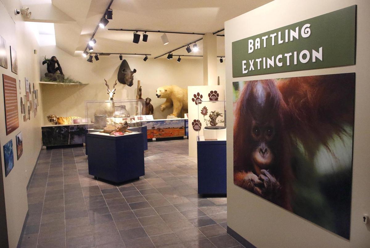 082119_Battling Extinction exhibit_013 tp.jpg