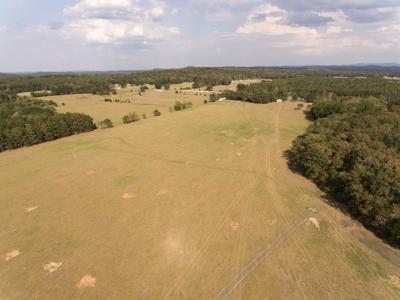 Septic spray field