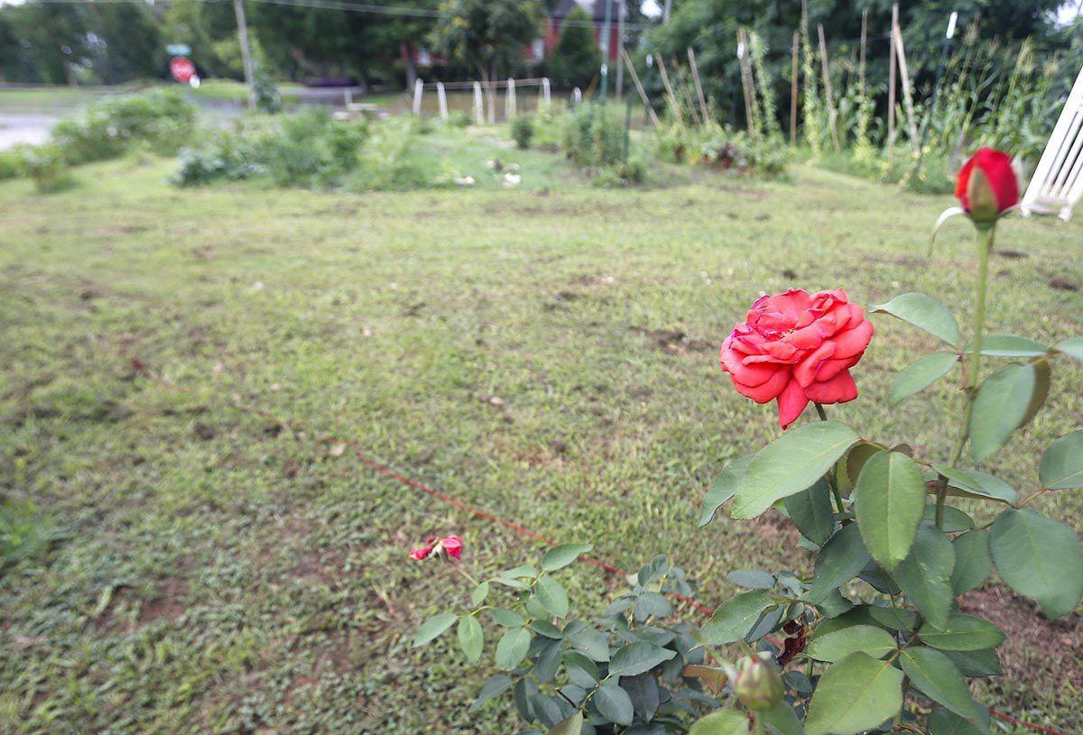 Interfaith garden