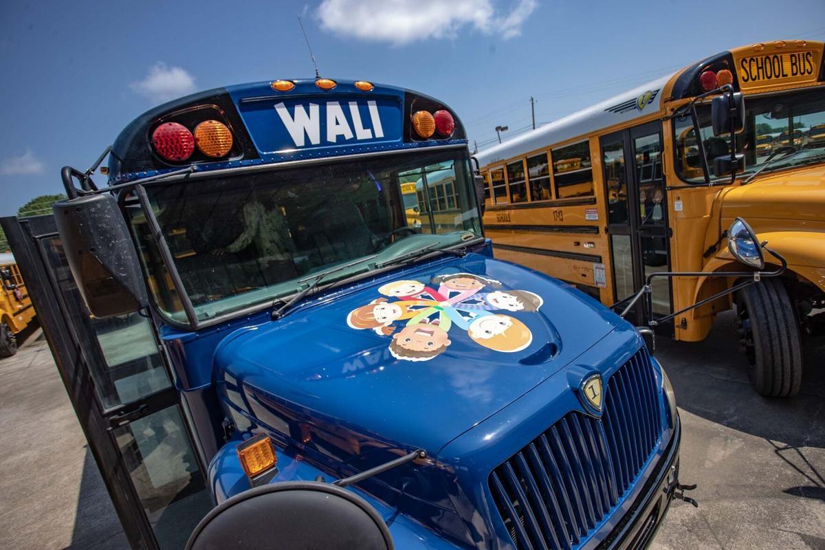 WALI 1-bc.jpg