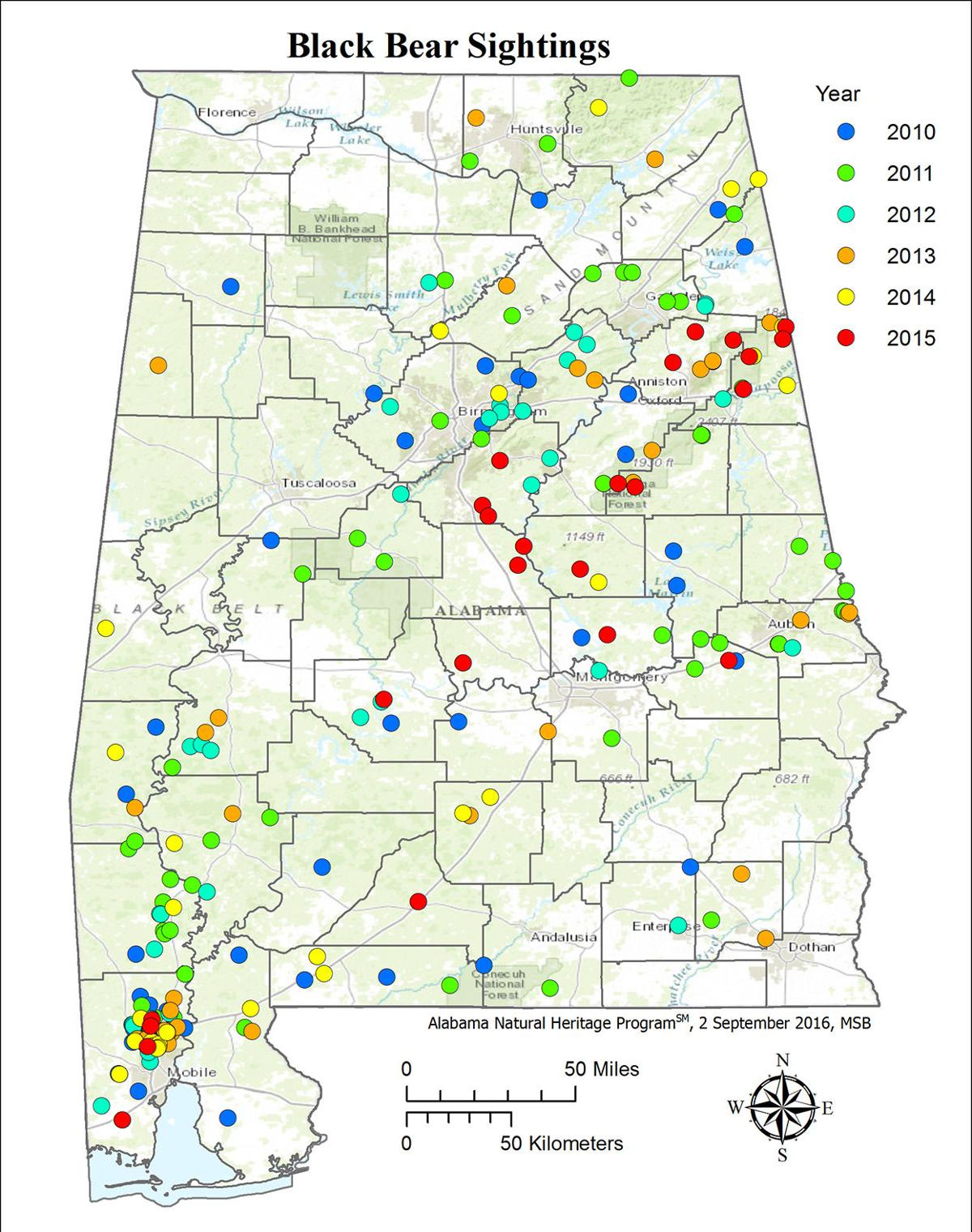 Forest experts, biologists: Black bears are in Alabama to