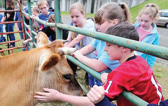 Children enjoy Farm Day