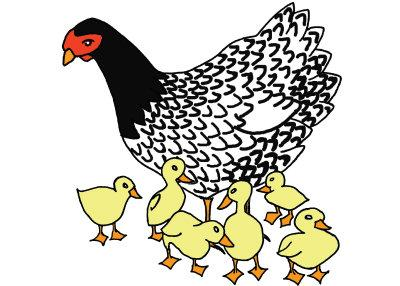 As a hen gathers her ducklings: An Easter essay | Features