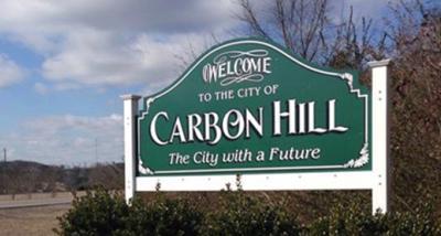 Carbon Sign