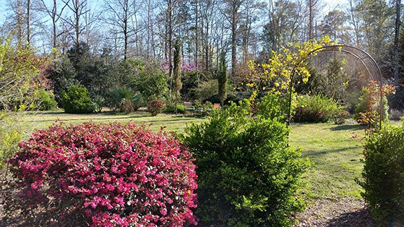 Ron Caldwell 's garden