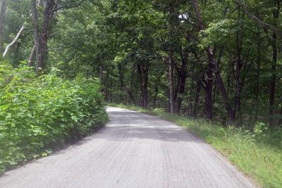 cheaha road