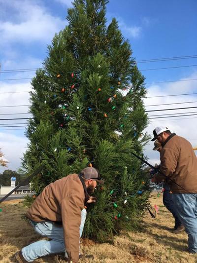RMC Christmas tree