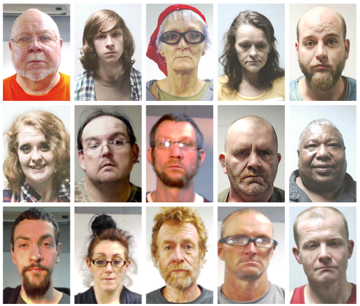 St  Clair Co  Sheriff's Office arrests 17 during 2-day