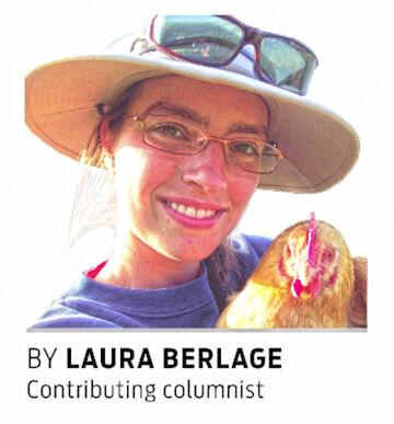 Laura Berlage SCR.jpg
