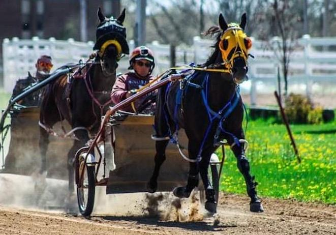 Harness racing will get county fair off to a fast start