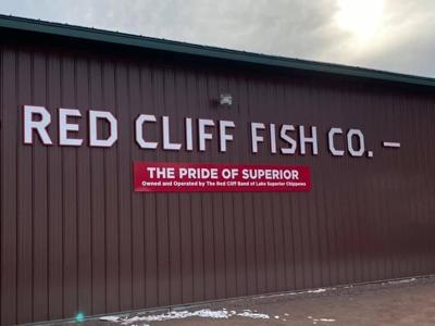 red cliff fish